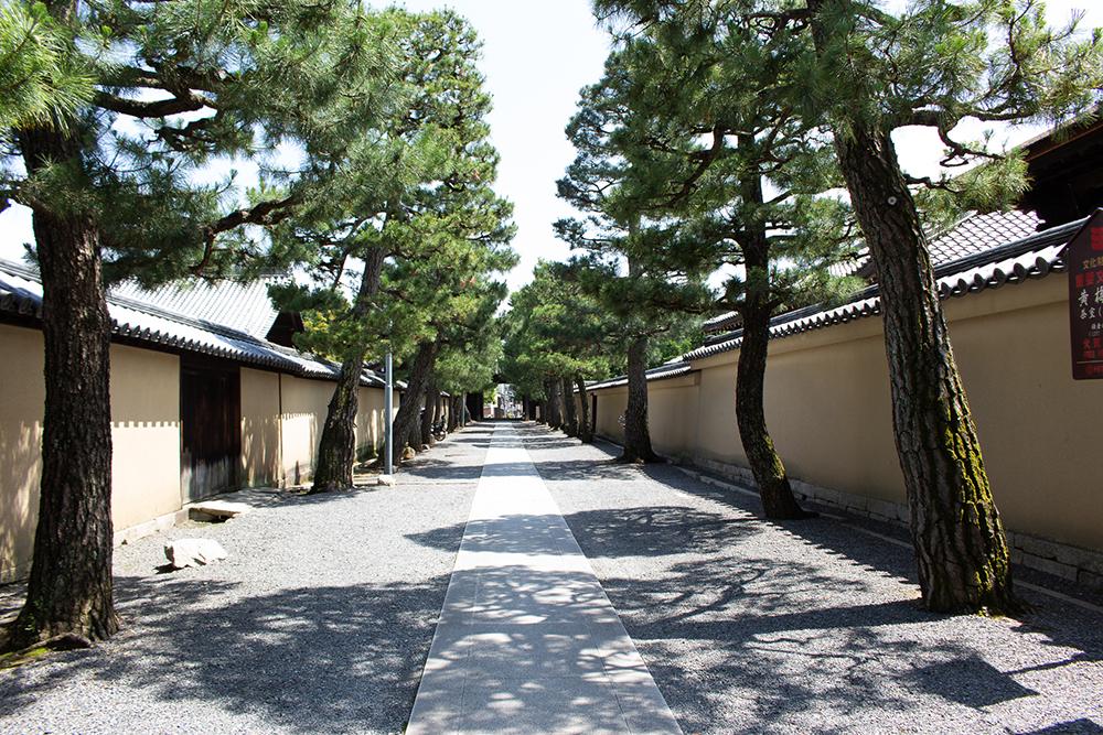 大徳寺境内