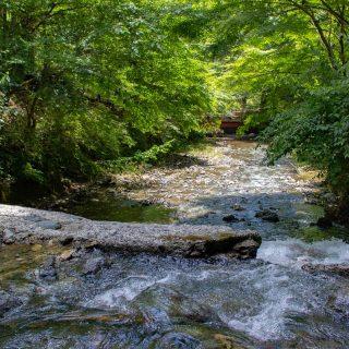 ご縁を結ぶ、京都旅 【洛北】3選