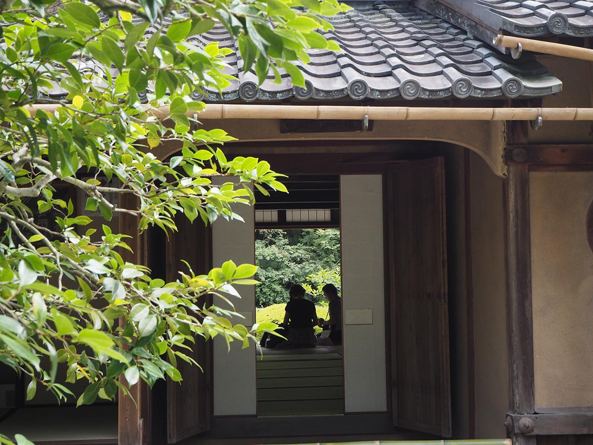 入り口から庭