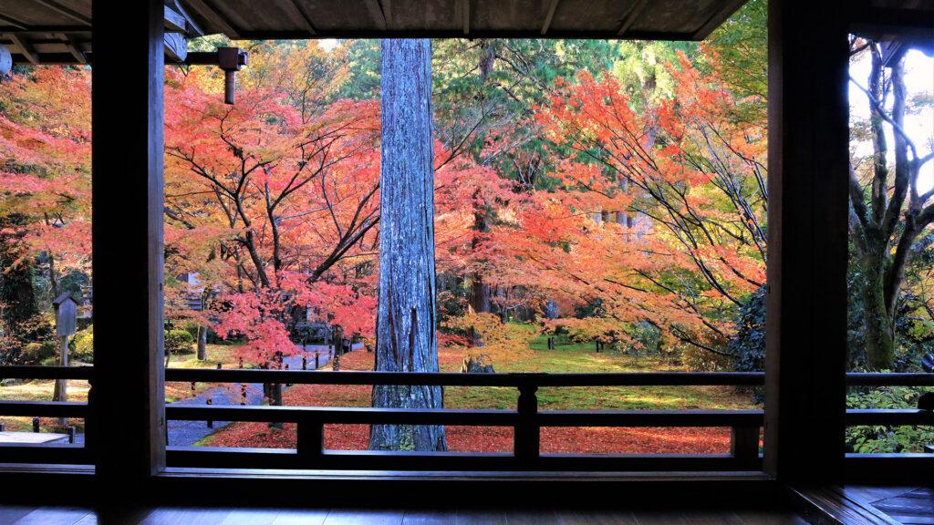 京都の紅葉~ 大原界隈~