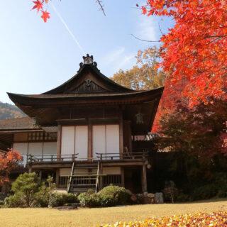 京都の紅葉~奥嵯峨満喫~