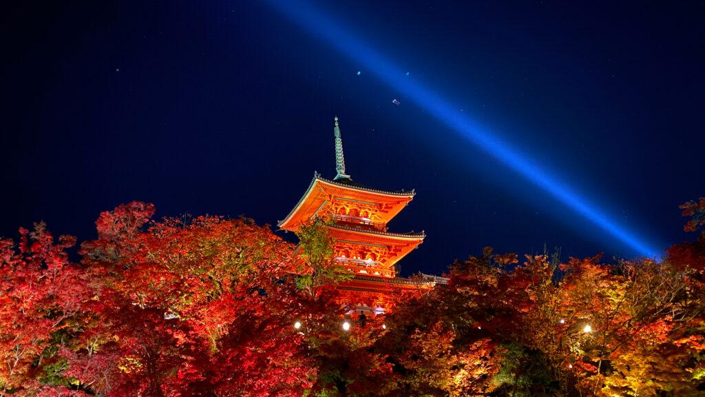 京都の紅葉~東・南エリア~