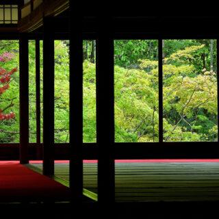 京都の庭園30選 〜岡崎方面~