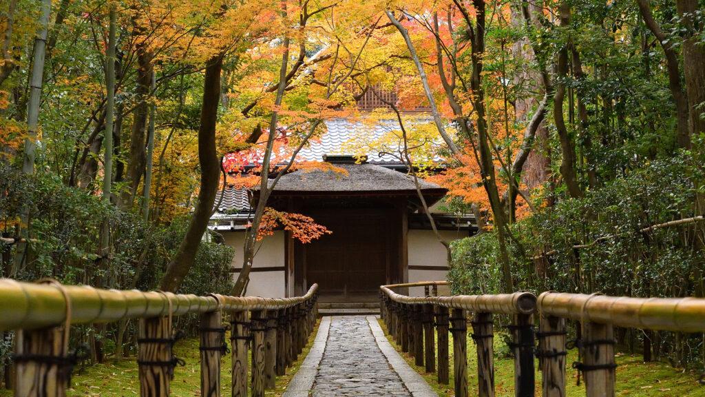 京の紅葉~北エリア~